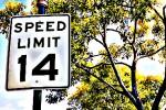 SpeedLimit14MPH